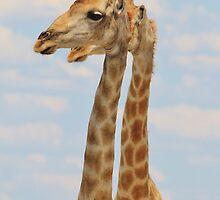Giraffe - Symmetrical Same by LivingWild