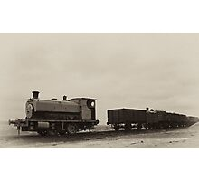 Old Mining Work Horse Photographic Print