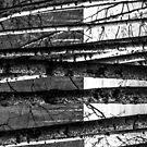 FELLOWS [iPhone cases/skins] by Matti Ollikainen