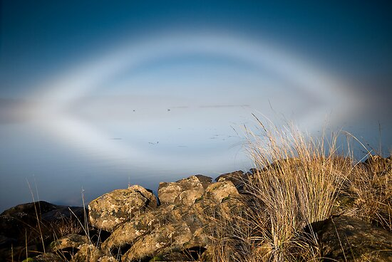Fogbow - Great Lake, Tasmania by Liam Byrne