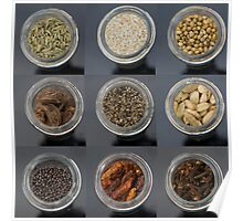 spice selection in jar Poster