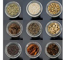 spice selection in jar Photographic Print