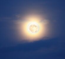 Our big yellow moon by missmoneypenny