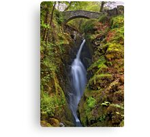 Aira Force - The Lake District Canvas Print