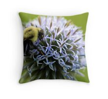 Bumble Bee - Globe Thistle Throw Pillow