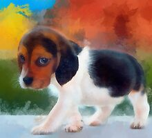 Beagle puppy by rok-e
