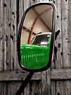Mirror Image by Carol Bleasdale