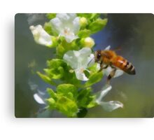 Bees And Basil Canvas Print