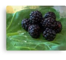 Black Berries Canvas Print