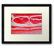 Trachea Cells under the Microscope Framed Print