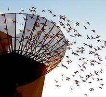 And When The Dish Broke Open The Birds Began To Fly by paintingsheep