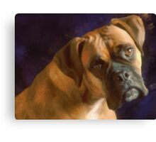 Dog Eyes Canvas Print
