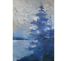 Blue Tree Painting the Sky Photographic Print