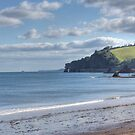 Dawlish Devon by spemj