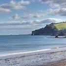 Dawlish Devon by spemj