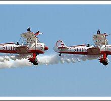 Wing walkers by Gordon Holmes