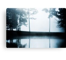 Moody Reflections Canvas Print