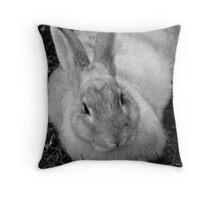 bw bunny Throw Pillow