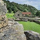 Rievaulx Abbey Museum  by Audrey Clarke