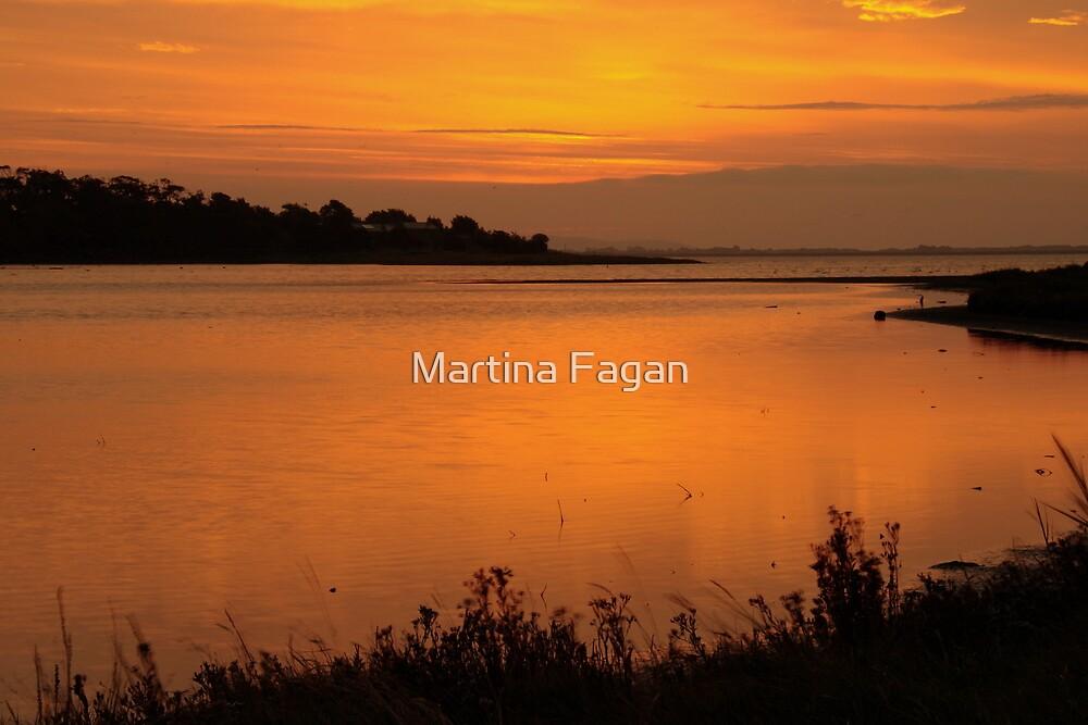 Morning on the Estuary 6:45  by Martina Fagan