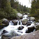 Upper Copeland Falls by John  Sperry