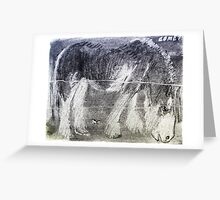 comet and willy Greeting Card