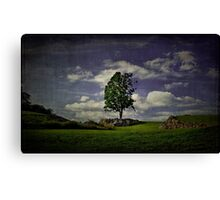 Wake Me Up When September Ends Canvas Print