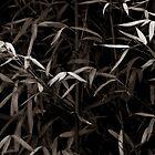 bamboo by Neil Messenger