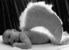 -Angel- by Evita