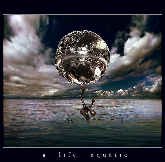 a life aquatic by ArtX