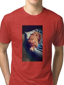Groodle Puppy Zoe Tri-blend T-Shirt
