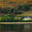 Little House on the Loch by maclac