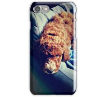 Groodle Puppy Zoe iPhone Case/Skin