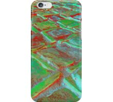 Square Stones Pathway Number 12 iPhone Case/Skin
