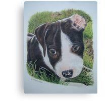 Dam ear Canvas Print