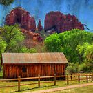Sedona's Cathedral Rock by Barbara Manis