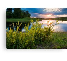 Summer Sunset on Rice River Canvas Print
