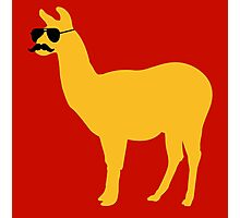 Funny llama with sunglasses and mustache Photographic Print