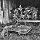 Tractor and Bush Hog by denise romano