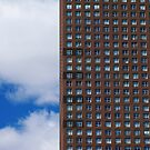 Windows in the Clouds by Brian Gaynor