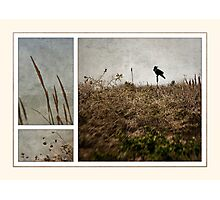 ten is for sorrow Photographic Print