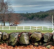 Foggy Farm by Monica M. Scanlan