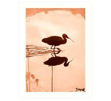 water bird Art Print