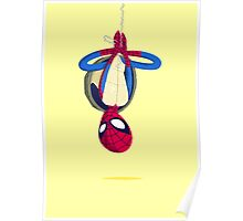 Heroes in a Half Shell: Spider-Man Poster