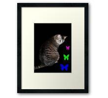 Cat and Butterflies ©  Framed Print