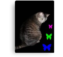 Cat and Butterflies ©  Canvas Print