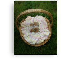 Basket of goodies - Next years Easter Bunnies! Canvas Print