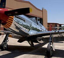 """""""INA The Macon Belle"""": P-51C Mustang by Pirate77"""