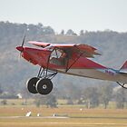 2015 Hunter Valley Airshow - Super STOL Take-off by muz2142