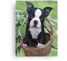 puppy basket  Canvas Print